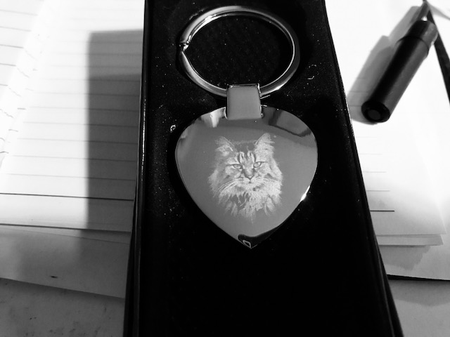 Pet Memorial Gifts – Memorykeepsakes